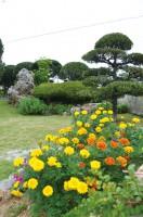 傾斜を活かしたお庭は夫婦一緒に造り上げたもの。それぞれのお庭にはどんな絆が隠されているのでしょう。